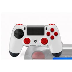 PS4 Controllers Personnalisée Meltdown