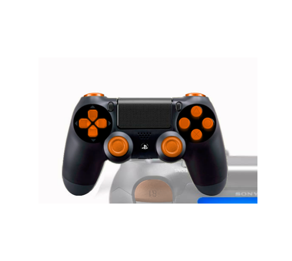 PS4 Controllers Perso Jason